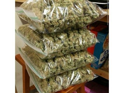 Best strains for sale//weed//kush