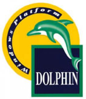 DOLPHIN ACCOUNTING & STOCK PROGRAM FOR IMPLEMENTAT