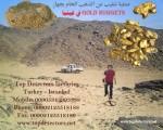 جهاز GOLD NUGGETS لكشف الذهب الخام وشذرات الذهب والانتيكا