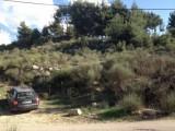أرض للبيع في منطقة شويا - المتن  820 م2