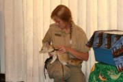 CUTE MALE AND FEMALE FENNEC FOXES READY FOR NEW HOMES